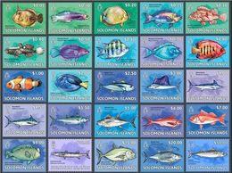 Salomon 2013, Fishes, 25val - Salomoninseln (Salomonen 1978-...)