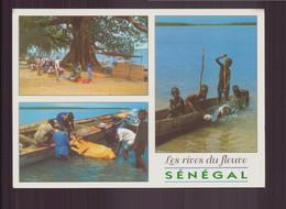 SENEGAL LES RIVES DU FLEUVE - Senegal