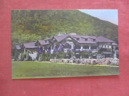 Hand Colored-- Bear Mountain Inn   Bear Mountain Park - New York >  Ref  4385 - NY - New York