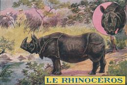 Chromos Image Le Rhinocéros - Autres