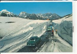 AOSTA  PICCOLO S. BERNARDO - Aosta