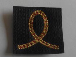 Grade Velcro Sur Fond Bleu Neuf éleve Officier Armée De L'air - Uniforms