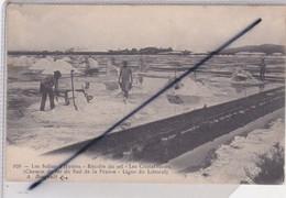 Hyères (83) Les Salins,Récolte Du Sel,Les Cristallisoires .Chemin De Fer Du Sud De La France -Ligne Du Littoral (N° 926) - Hyeres