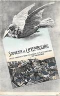 Souvenir De Luxembourg NA4: L'Alzette Traversant Le Grund Et Ville Haute 1910 - Luxemburg - Town
