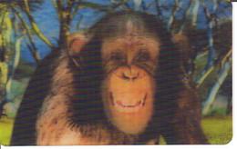 Carte Collector Animée Animaux (Cora / Match) : 2/44  : Chimpanzé - Other Collections