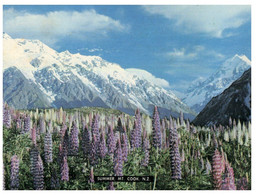 (P 14) New Zealand - Mt Cook Summit - Neuseeland