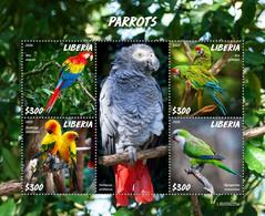 Liberia 2020 Fauna  Parrots  S202007 - Liberia