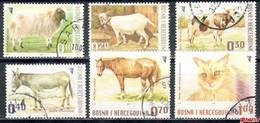 Bosnia Sarajevo - Farm Animals 2007 Used Set - Bosnia And Herzegovina