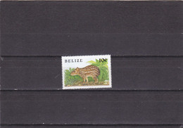 Belice Nº 913 - Belize (1973-...)