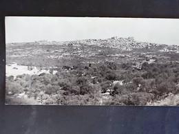 SICILIA -AGRIGENTO -NARO Bozza -F.G. LOTTO N°748 - Agrigento