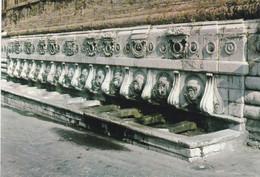 """(L015) - ANCONA - Fonte Del Calamo Detta """"delle 13 Cannelle"""" - Ancona"""