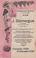 Catalogue Etablissement Hortocole D'Alger J. Domergue 1932 - Giardinaggio