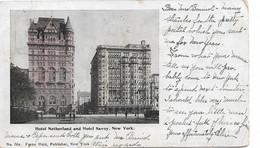 NEW YORK  NETHERLAND AND HOTEL SAVOY - NY - New York