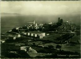 TALAMONE ( ORBETELLO  / GROSSETO ) PANORAMA - EDIZIONE CELLETTI - SPEDITA 1955 (BG6155) - Grosseto