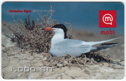 SLOVENIA B-446 Prepaid Mobi - Animal, Bird, Common Tern - Used - Slovenia