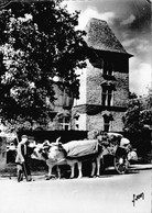 Carte 1960 MAULEON / L'HOTEL ANDURAIN ET ATTELAGE BEARNAIS - Mauleon Licharre