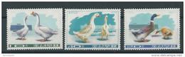 KOREA - YVERT N° 1387/1389 NEUFS - MINT - BIRDS - OISEAUX - Korea, North