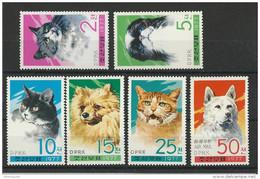KOREA - YVERT N° 1479/83 + PA7 NEUFS ** - MINT MNH - CATS - CHATS - Korea, North
