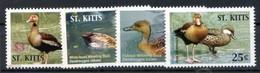 St Kitts 2005 Birds Ducks Set 4v  MNH - Entenvögel
