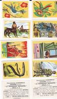 """Chocolaterie D'AIGUEBELLE, """"La Promenade Enchantée"""" Album N°2, 280 Images - Autres"""