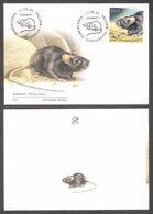 Estonian Fauna – The Black Rat Estonia 2020  Stamp FDC  Mi 997 - Estonia