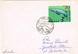 37807. Carta Impresos Durk WARSZAWA (Polska) Polonia 1967. Prehistoric Animal. Eusthenopteron - Covers & Documents