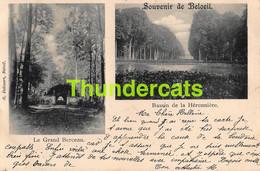 CPA SOUVENIR DE BELOEIL BASSIN  DE LA HERONNIERE - Beloeil