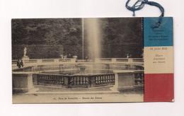 COMITE FRANCO BELGE - CARTE JOURNEE DES GRANDES EAUX DE VERSAILLES JUILLET 1915 - OEUVR D'ASSISTANCE AUX MUTILES - Guerra 1914-18