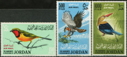 JORDAN 1964 Birds Of Prey Bushshrike Eagle Kingfisher Animals Fauna MNH - Águilas & Aves De Presa