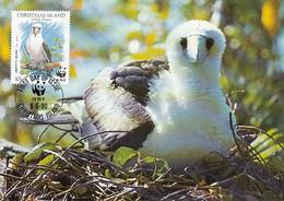Christmas Island 1990 Maxicard Sc #270 10c Abbott's Booby WWF - Christmas Island