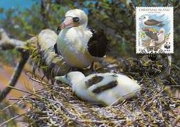 Christmas Island 1990 Maxicard Sc #273 41c Abbott's Booby WWF - Christmas Island