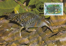 Cocos Islands 1992 Maxicard Sc #262c 30c Cocos Buff-banded Rail WWF - Cocos (Keeling) Islands