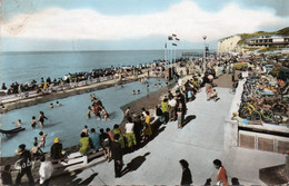 Carte Postale Semi Moderne - Circulé - Dép. 76 - VEULES LES ROSES - Bassin, Jeux - Veules Les Roses