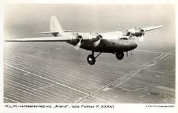 Luchtvaart-vliegtuig Fokker F36 Arend AM4760 - 1919-1938: Between Wars