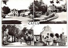 Catus. Multivues Edit Cim - Otros Municipios