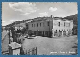 GROSSETO TERME DI ROSELLE VG. 1956 N°967 - Grosseto