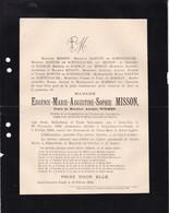 LAEKEN SAINT-JOSSE MISSON Eugénie Veuve WIDMER Adolphe 1839-1894 Famille ROBYNS De SCHNEIDAUER De BORMAN - Obituary Notices