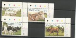 685/98  Vaches  Luxe Et Bdf    (clasbleucfavanua) - Vanuatu (1980-...)