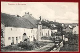 Luxembourg  Souvenir De Buschrodt . - Postales