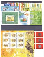 2002. Uzbekistan. Full Years. MNH ** - Uzbekistan