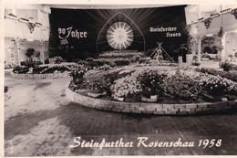 Steinfurther Rosenschau 1958 - Steinfurt