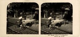 FRANCIA FRANCE. PARIS. JARDIN D'ACCLIMATATION MALABAR AU TRAVAIL - ESTEREOSCOPICA -  STÉRÉOSCOPIQUE - STEREOSCOPIC - Stereo-Photographie