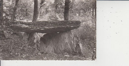 88 NOGENT EN BASSIGNY  -  La Pierre Alot, époque Gallo-romaine  -  CPSM PF  - - Nogent-en-Bassigny