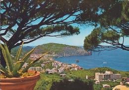 Ischia - Lacco Ameno - 03/09/1963 - Italy
