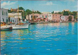 Ischia - Porto - 08/08/1960 - Italy