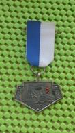 Medaille :Netherlands  -  Stichting Michaël Nijmegen 1969 - Paises Bajos