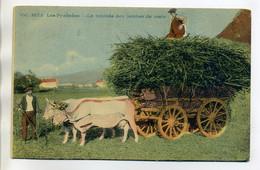 64 LES PYRENEES Agriculture La Rentrée Des Jambes De Mais Paysans   Attelage Boeufs 1920D02 2018 - Francia