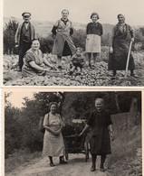 DC3708 - Landwirtschaft, Familie Auf Dem Felde, 2 Fotos, Echtfotos 1940 - Autres