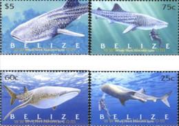 Belize 2004, Whales, MNH Stamps Set - Belize (1973-...)