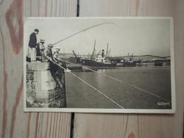 Cpa Le Tréport L'arrière Port, Les Pêcheurs - Le Treport